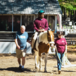 man and woman walking beside horse and rider